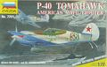 P-40 Tomahawk (American WWII Fighter)